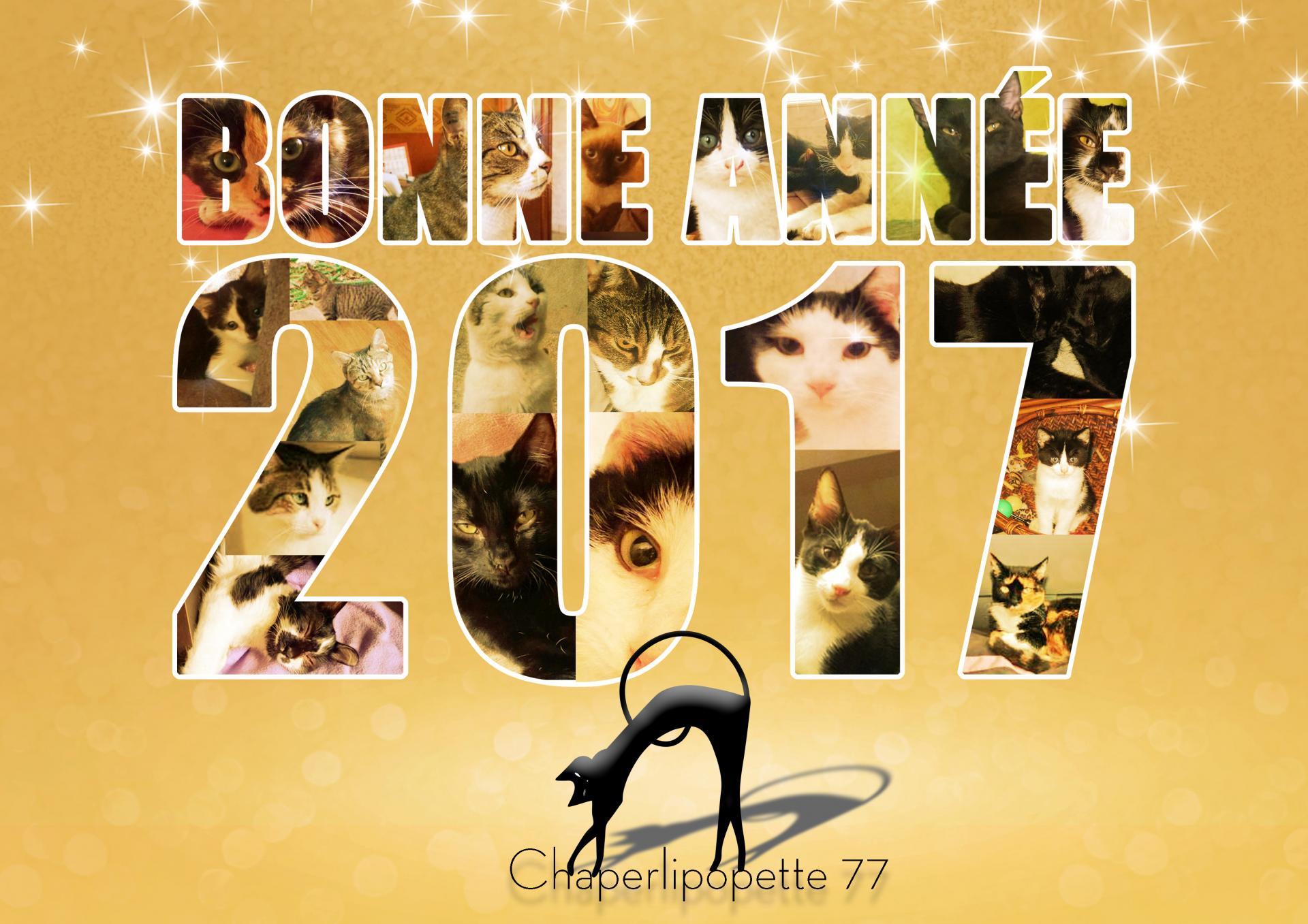 Bonne annee 2016 def hd