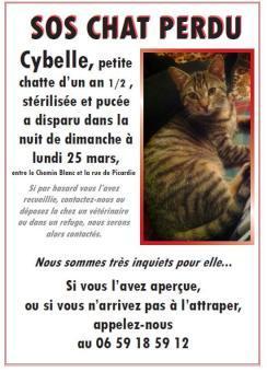 cybelle-25032012-villierssurmorin.jpg