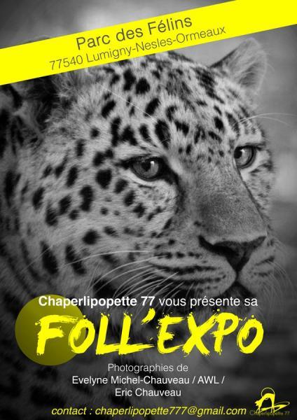 Expo 3 copier
