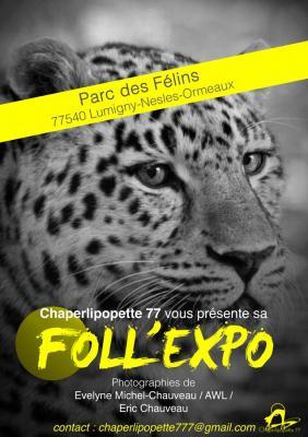 Expo2 parc affiche copier