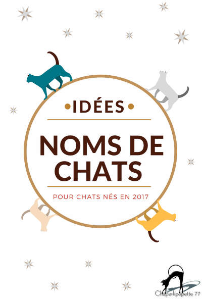Idees noms chats 2019