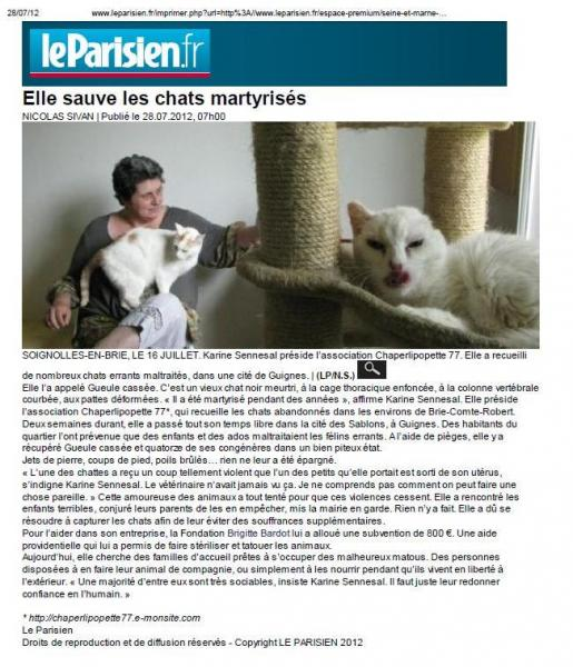 Le parisien77 28072013